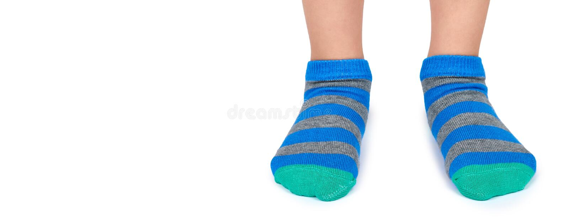 Badinez les jambes dans les chaussettes rayées d'isolement sur le fond blanc, copiez le calibre de l'espace photographie stock