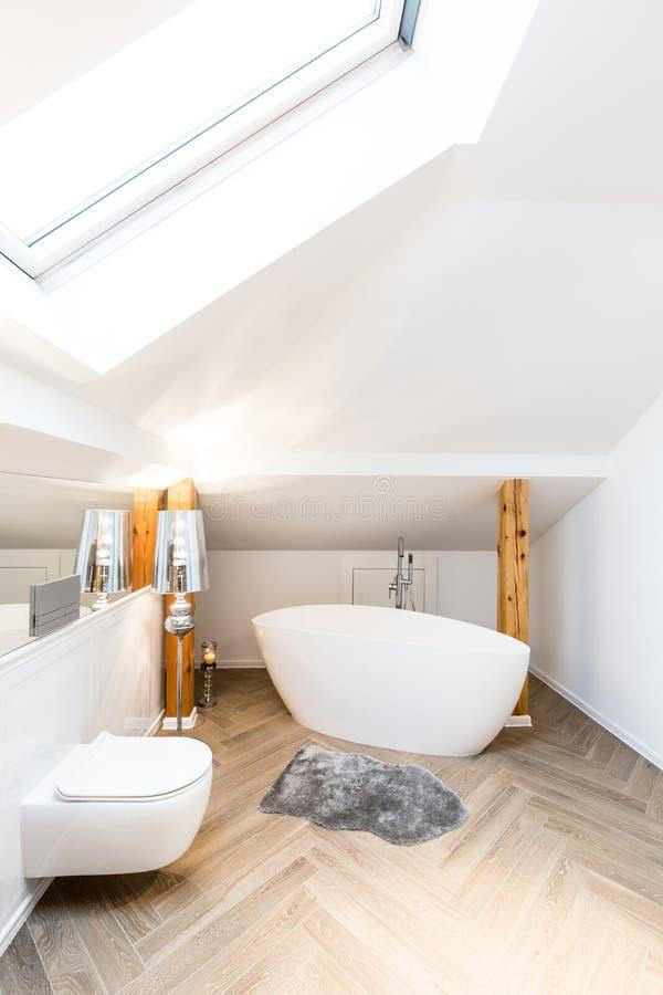Badkuip en toilet royalty-vrije stock fotografie