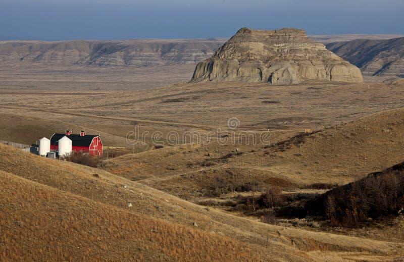 Badlands Canada Saskatchewan royalty-vrije stock afbeelding