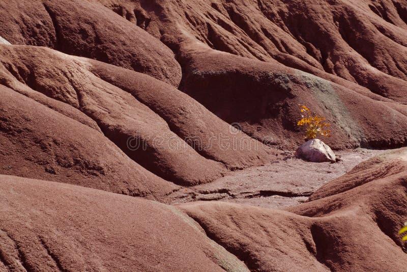 Badlands de Caledon imagen de archivo