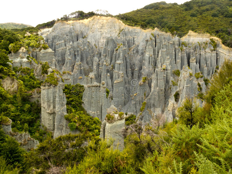 Download Badlands Hoodoos Of Putangirua Pinnacles, NZ Stock Image - Image: 24975341