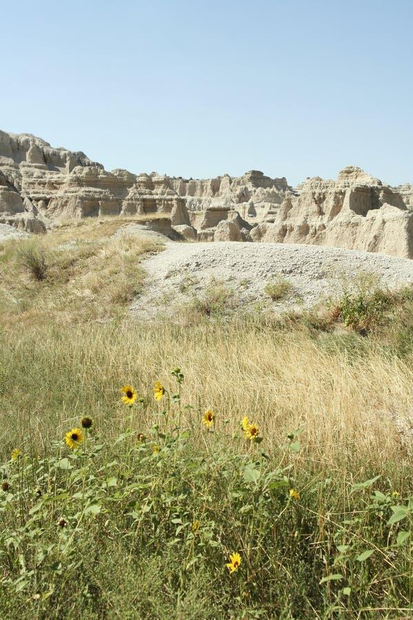 Free Badlands National Park, South Dakota Royalty Free Stock Photos - 21601138