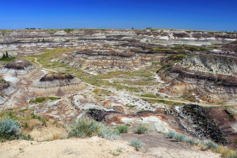Badlands på hästskokanjonen som är västra av Drumheller, Alberta arkivbild