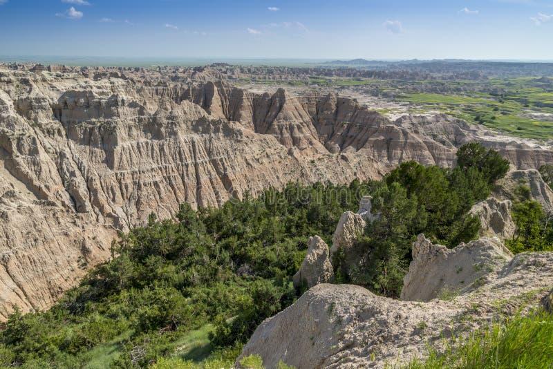 Badlands rugosos con el valle llenado pino fotografía de archivo libre de regalías