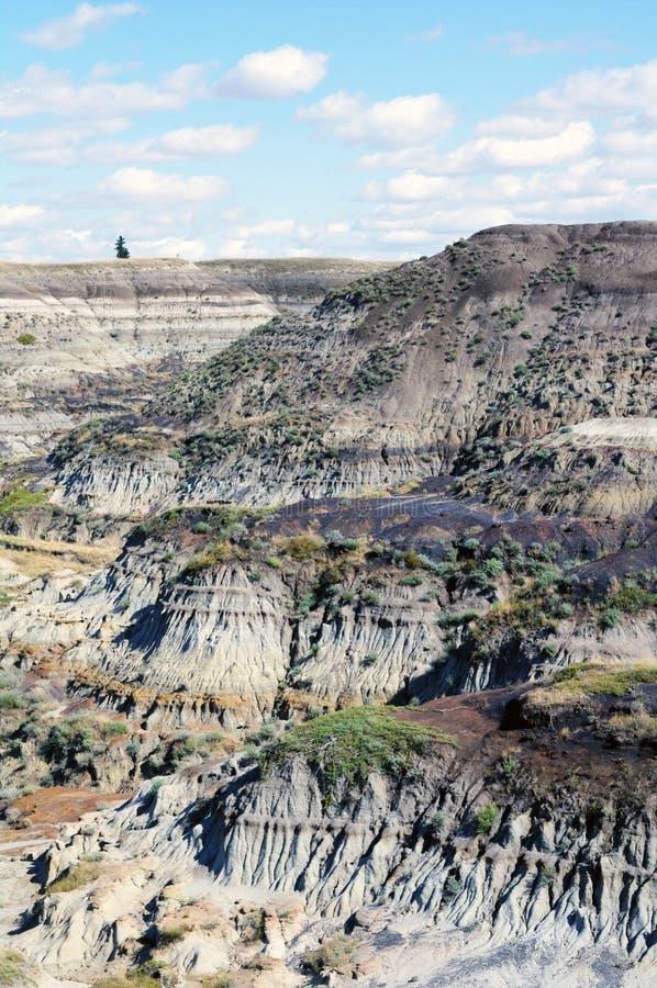 Badlandscanion dichtbij Drumheller stock afbeeldingen