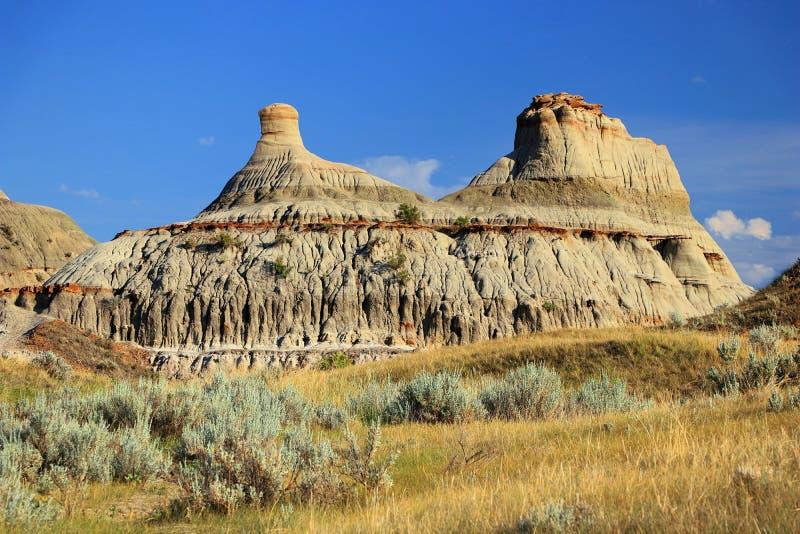 Badlandsindrukken in Avondlicht, Dinosaurus Provinciaal Park, Alberta royalty-vrije stock afbeelding