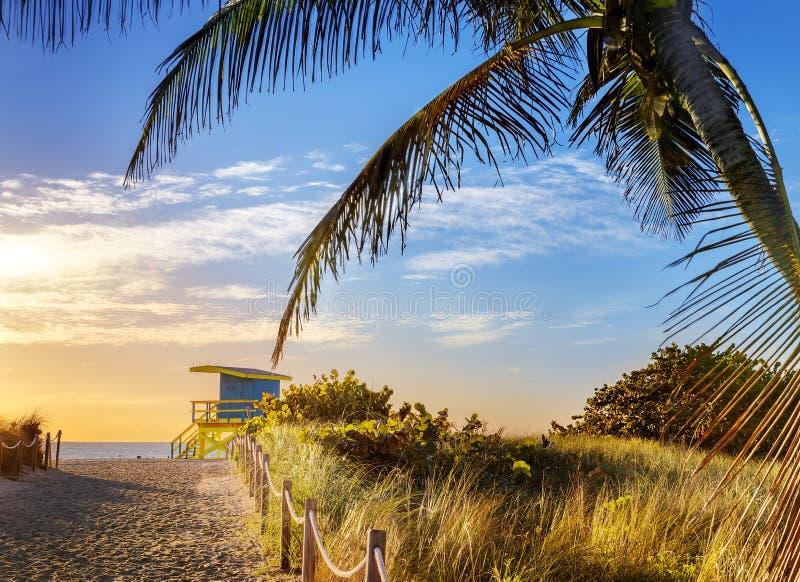 Badmeester Tower, het Strand van Miami, Florida royalty-vrije stock foto