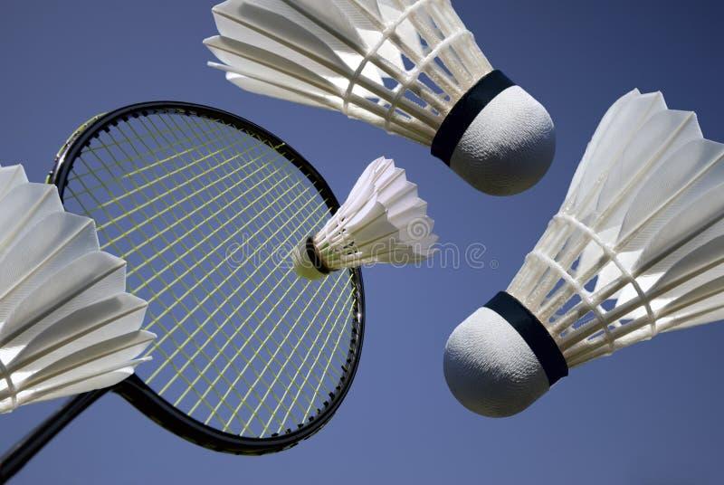 badminton действия стоковое фото rf