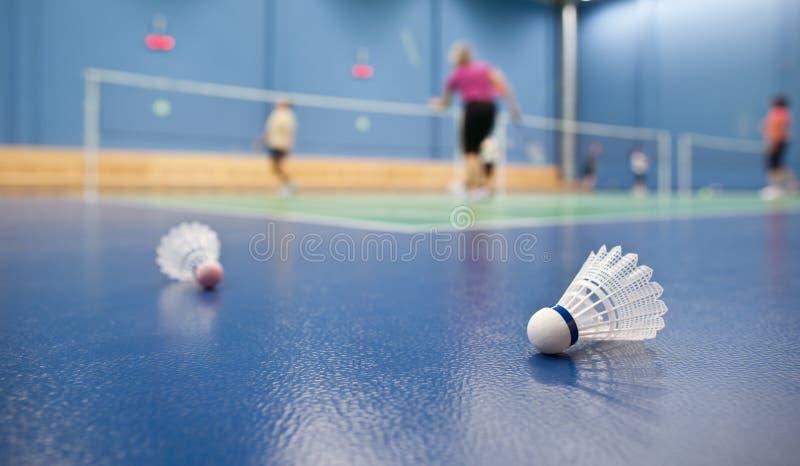 Download Badminton stock image. Image of equipment, fitness, leisure - 18117467
