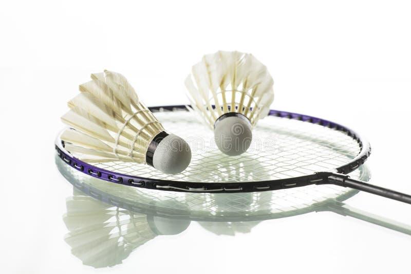 badminton obrazy royalty free