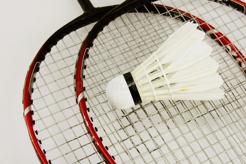 badminton image stock