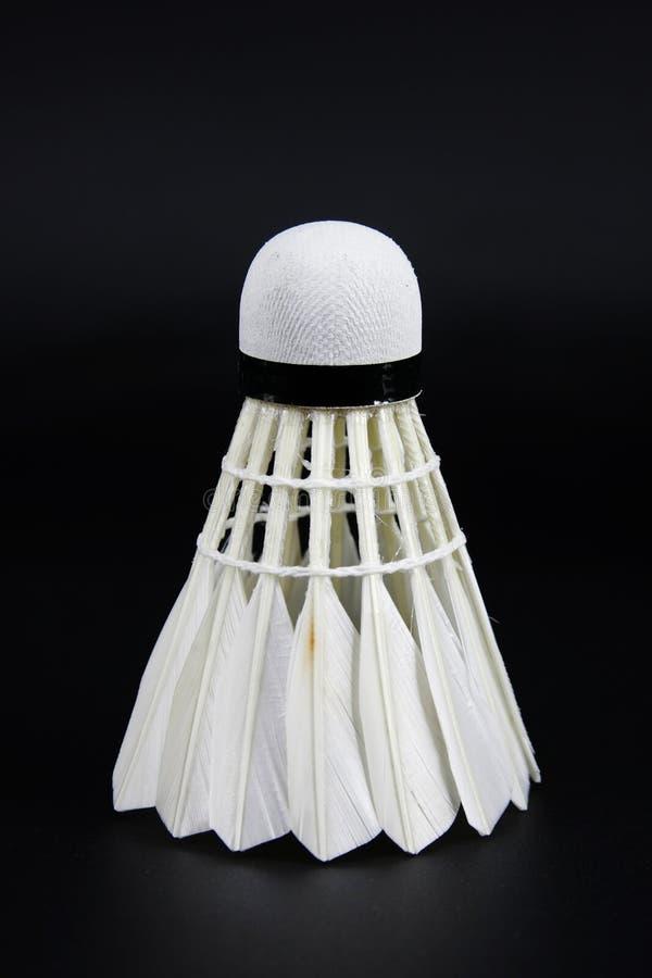 badminton photographie stock libre de droits