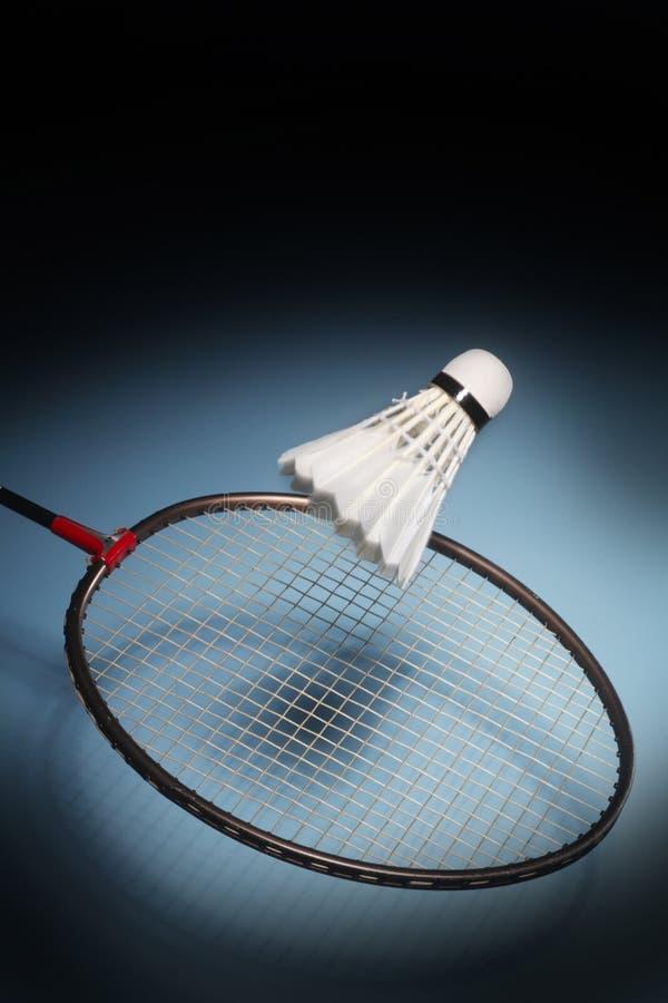 Badminton do jogo imagens de stock royalty free