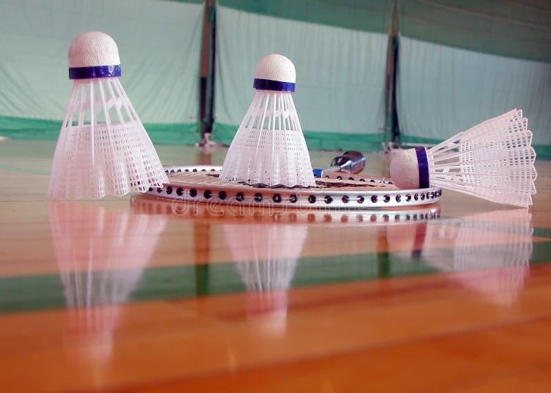 badminton inomhus fotografering för bildbyråer