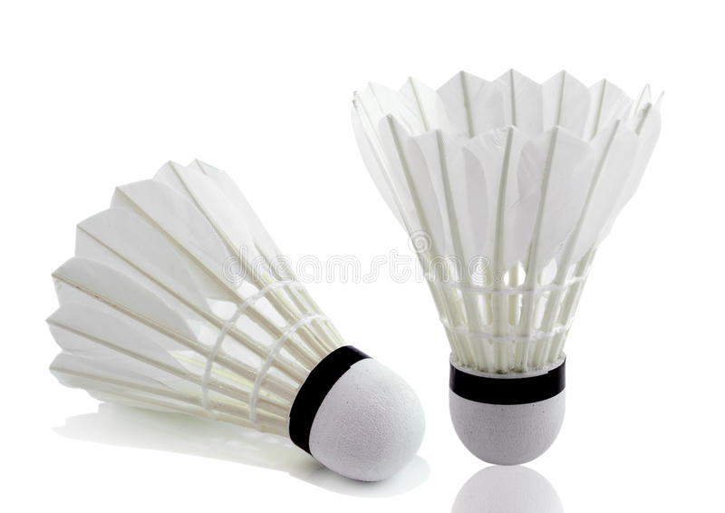 Badminton no fundo branco fotografia de stock