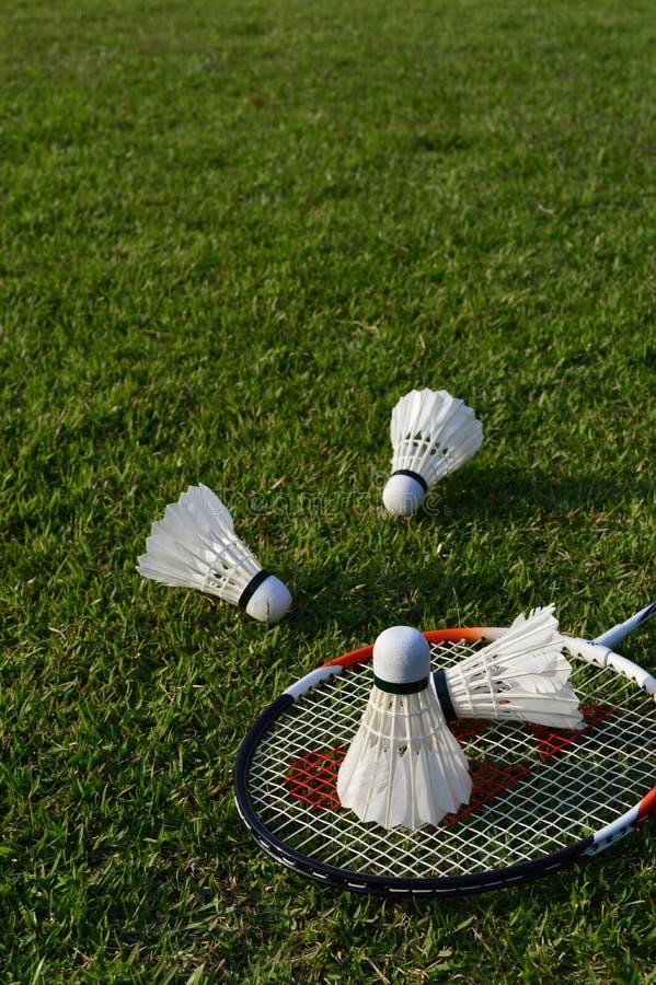 Badminton op groen gras stock foto's