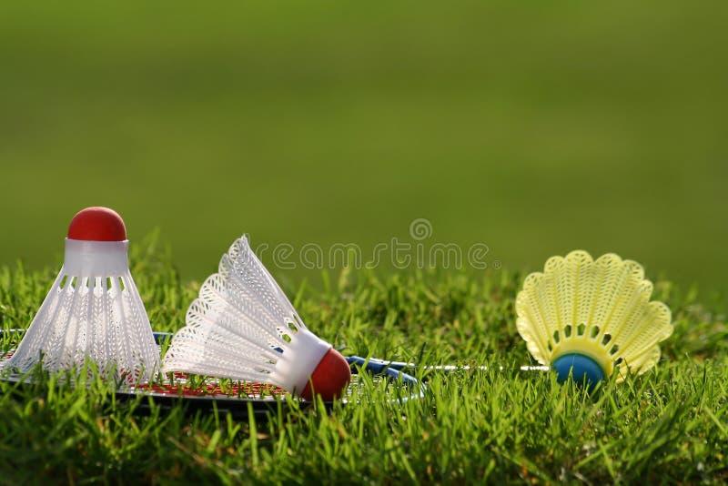 Badminton racket with shuttlecocks. In the grass stock photos