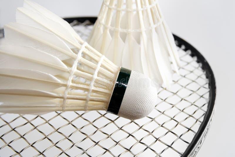 Badminton Shuttlecocks On The Racket. Horizontal Royalty Free Stock Image
