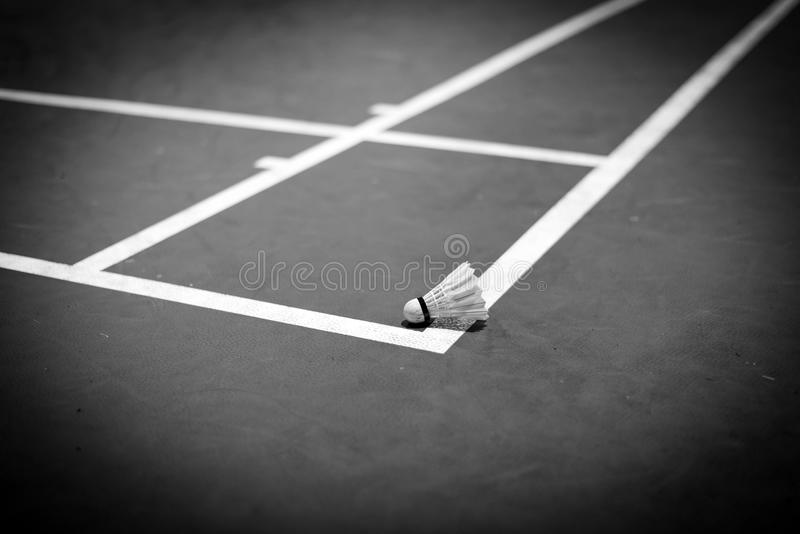 badmintonfjäderboll på domstolen, svartvit signal arkivfoton