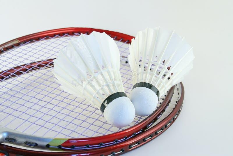 badmintonracket royaltyfria bilder