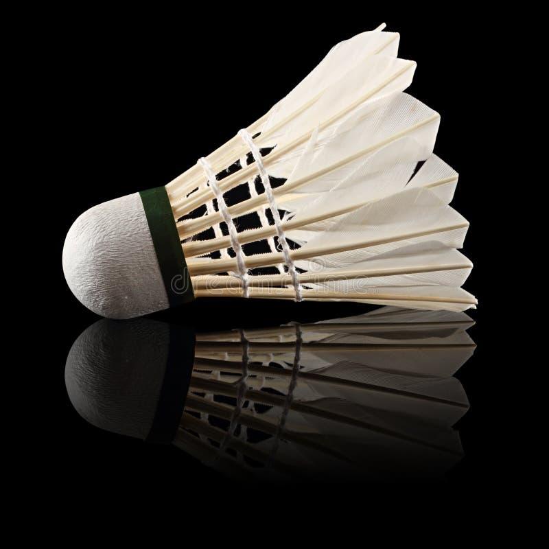 Badmintonschwarzes lizenzfreie stockfotos