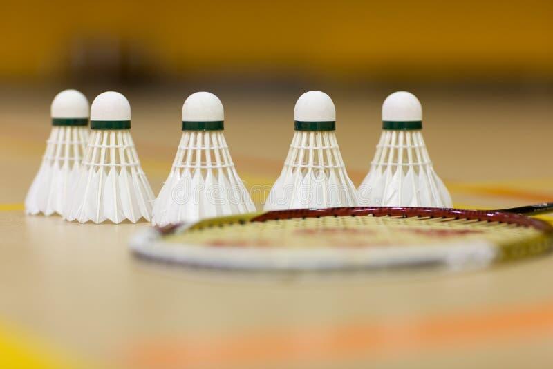 Badmintonvögel lizenzfreie stockfotografie