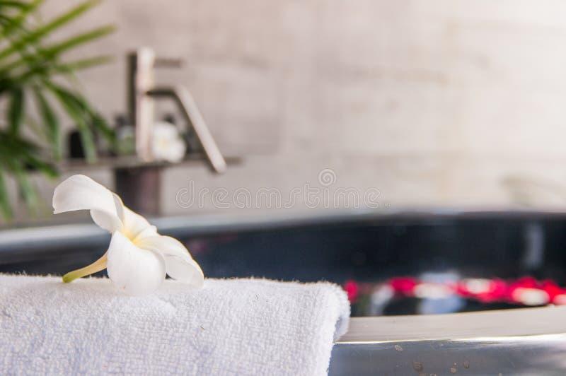 Badrör i en brunnsort royaltyfri foto