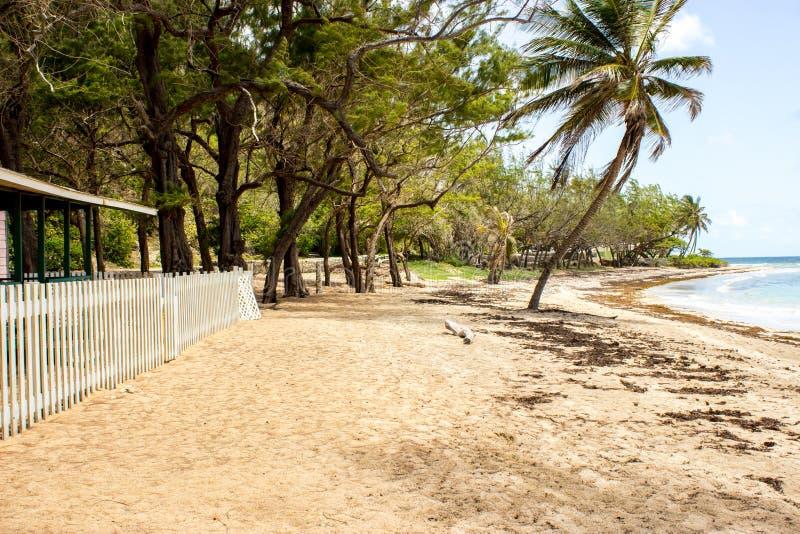 Badstrand in de parochie van St John, Barbados stock foto