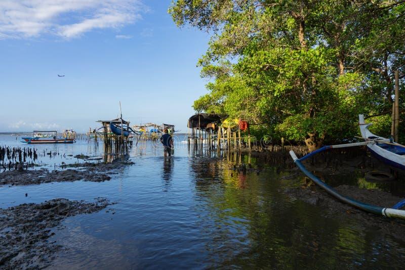 BADUNG/BALI- 10 DE MAIO DE 2019: Um homem estava estando no meio de uma floresta dos manguezais cuja a ?gua do mar recuasse Na fr imagens de stock royalty free