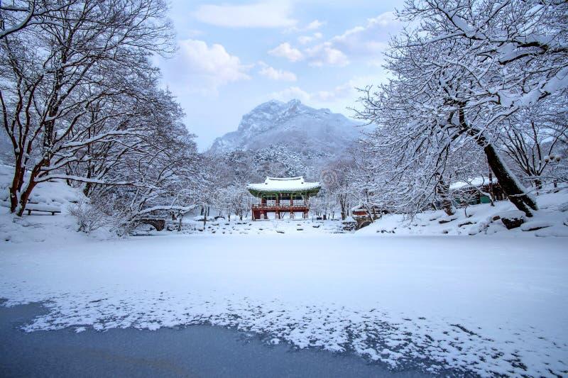 Baekyangsatempel en dalende sneeuw, Naejangsan-Berg in de winter met sneeuw royalty-vrije stock foto's