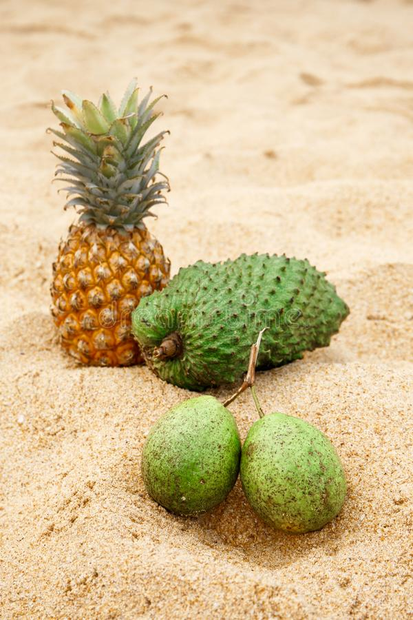 Bael, ananas i saucep na piasku, zdjęcie royalty free