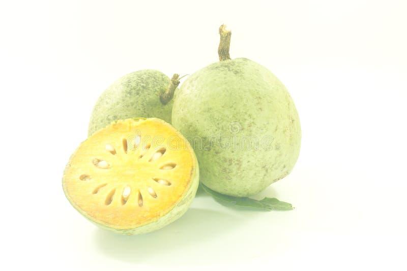 Bael-Frucht lizenzfreie stockfotos