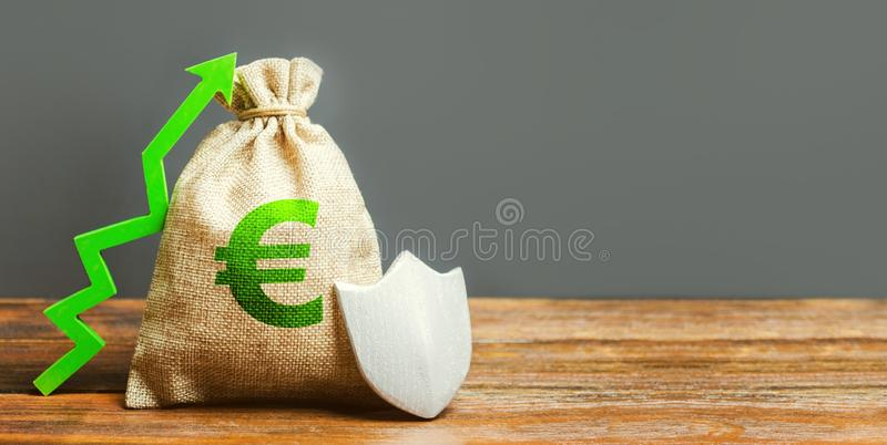 Bag with the Euro sign, green up arrow and metal shield. Euro zone. concept of growth and protection of investments, guarantee. Of deposits. Reducing risks stock photo