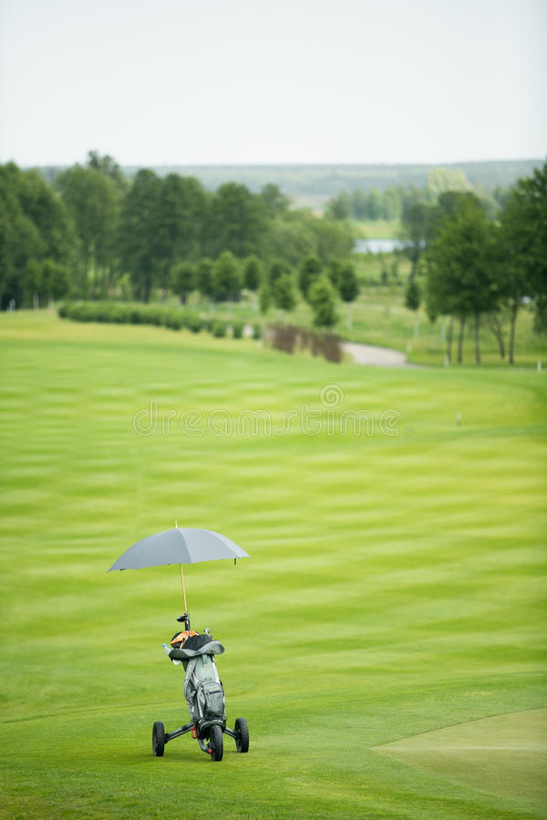 Bag with golf clubs and umbrella. On the grass royalty free stock image