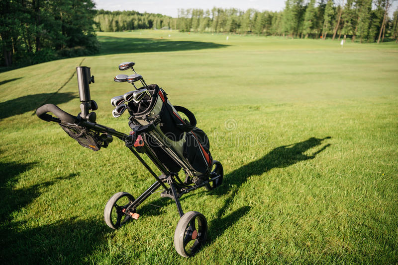 Bag with group of golf clubs. On green grassy field royalty free stock photo