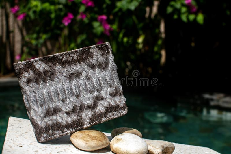 Python piton snake fashionable handbag, clutch.Python accessories. bag, wallet leather Python, women`s, man s handbag, bag snake stock photos