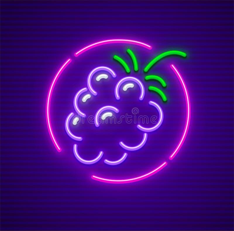 Baga de Blackberry no sinal de néon do ícone do círculo ilustração royalty free