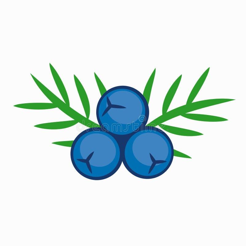 Baga de zimbro azul da cor ilustração royalty free