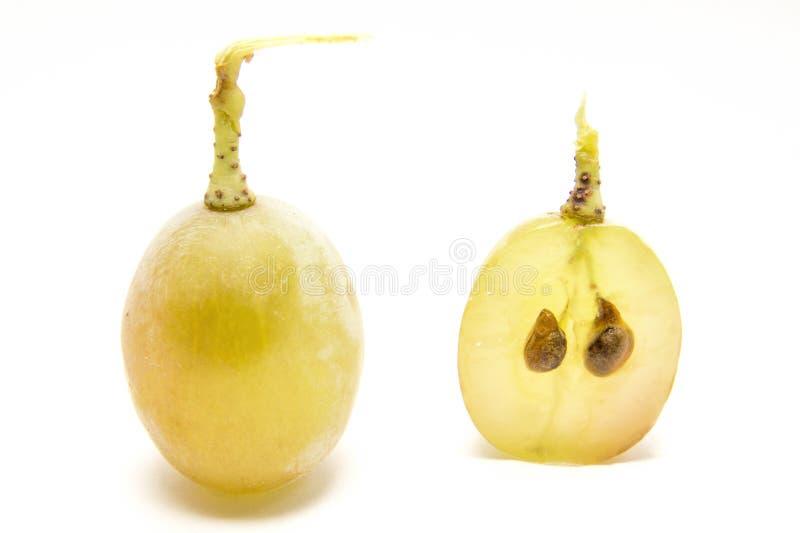 Baga e sementes da uva imagens de stock royalty free