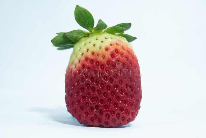 Baga madura vermelha do fruto verde e branco da morango da cor fotografia de stock royalty free