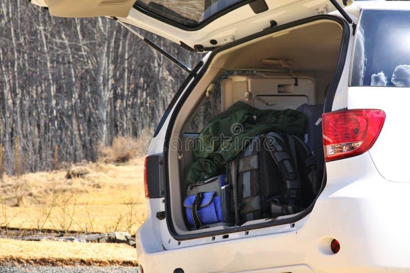 Bagage In Boomstam Van Auto Royalty-vrije Stock Foto's