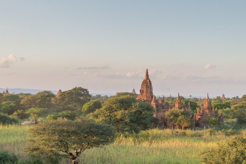 Bagan寺庙区域,缅甸日落视图  免版税库存图片