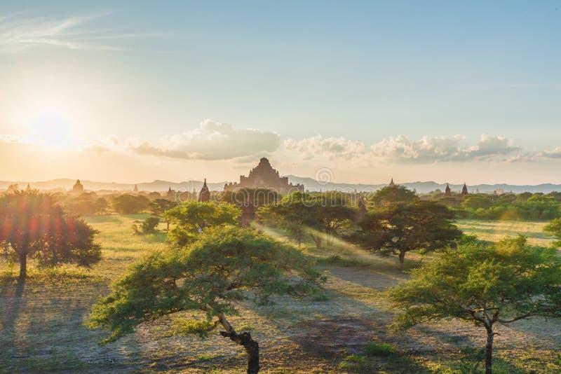 Bagan寺庙区域,缅甸日落视图  库存图片
