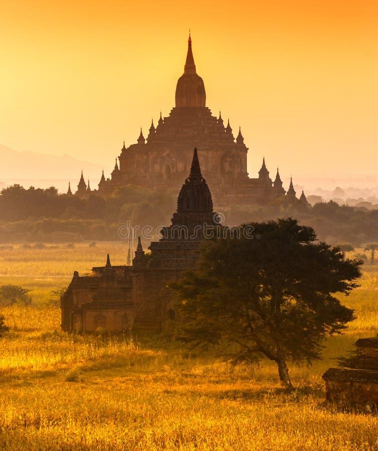 Bagan,缅甸。 库存照片