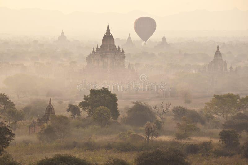 Виски в Bagan стоковые фото