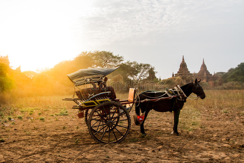 Bagan horse buggy. BAGAN,MYANMAR-MARCH 9: Horses buggy waiting for tourist in front of ancient temple in Bagan,Myanmar on March 9,2017.Horse buggy is famouse stock photos