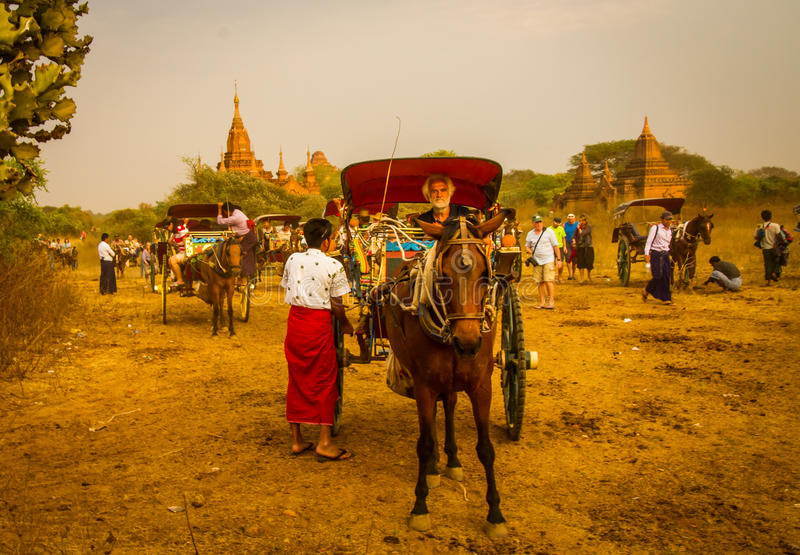 Bagan horse buggy. BAGAN,MYANMAR-MARCH 9: Horses buggy waiting for tourist in front of ancient temple while sunset in Bagan,Myanmar on March 9,2017.Horse buggy royalty free stock photo