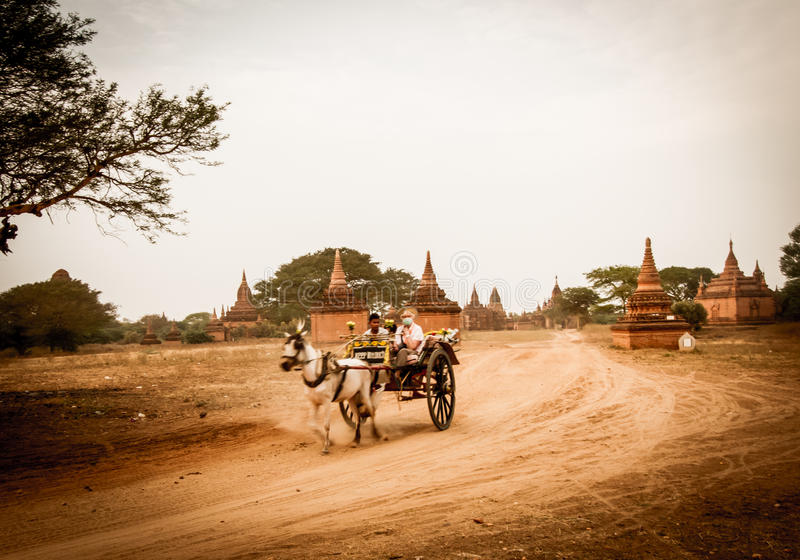 Bagan horse buggy. BAGAN,MYANMAR-MARCH 9:Tourist riding horse buggy to visiting ancient pagodas in Bagan,Myanmar on March 9,2017.Horse buggy is popular for stock photography