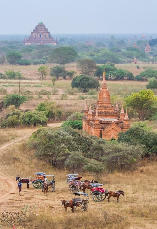 Bagan konia powozik obrazy royalty free