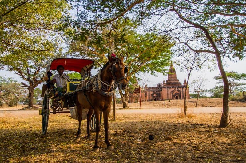 Bagan konia powozik zdjęcia royalty free